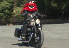 CHEK Upside: Crofton man's Muppet motorcycle helmets bringing smiles