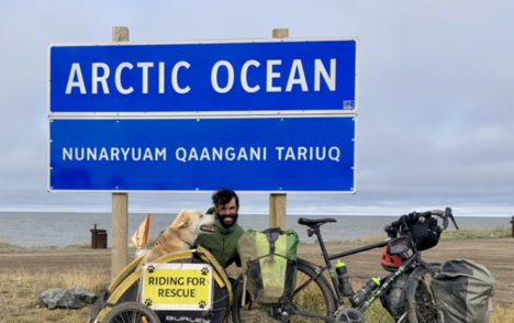 Vital People: Paul and Cinder's epic journey to the Arctic