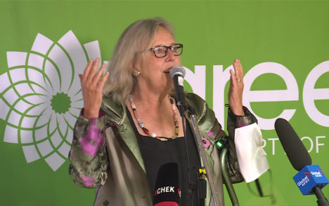 'A catastrophic night': Green Party forges ahead after voter support plummets