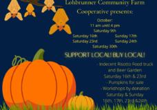 Lohbrunner Community Farm Pumpkin Festival