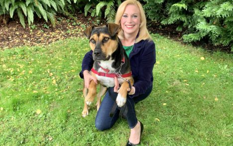 Pet CHEK: Sweet girl Kiko from the BC SPCA needs her forever home