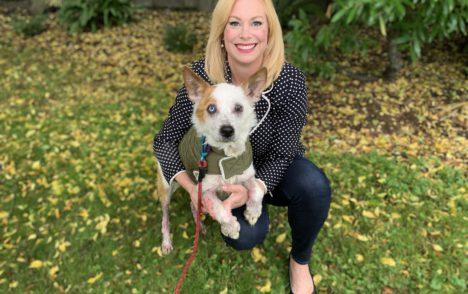 Pet CHEK: Sweet Sir Lancelot was found outside in rough shape