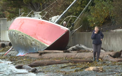 Derelict boats on Island beaches could take years to remove